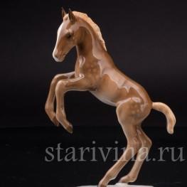 Фарфоровая статуэтка Жеребенок, Hutschenreuther, Германия, кон. 20 в.