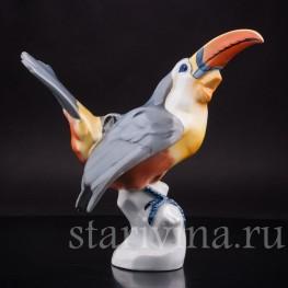Фарфоровая статуэтка птицы Тукан, Fritz Krug KG, Германия, 1902-1968 гг.